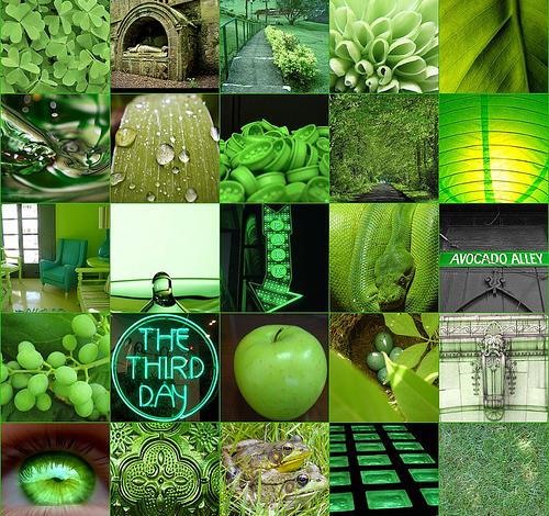 За какво помага Зеления цвят в Цветотерапията и Магията