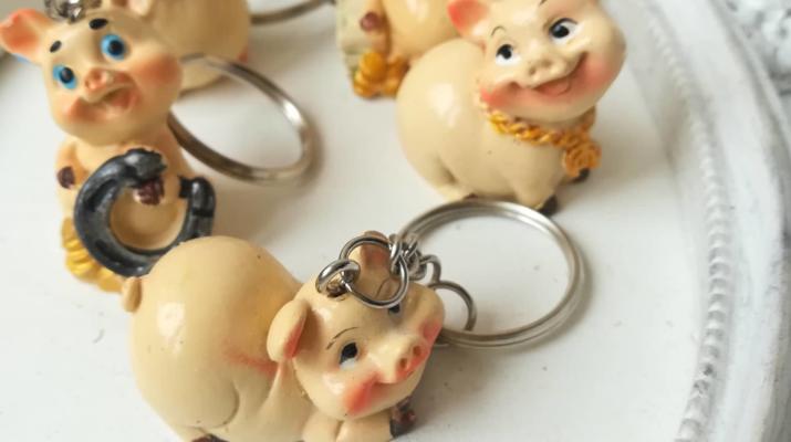 Фън шуй ключодържатели за късмет и благополучие през 2019 - годината на прасето 5 броя