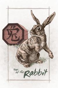 Предсказание за зодия заек през 2020 - Годината на плъха