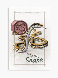 Предсказание за зодия змия през 2020 - Годината на плъха