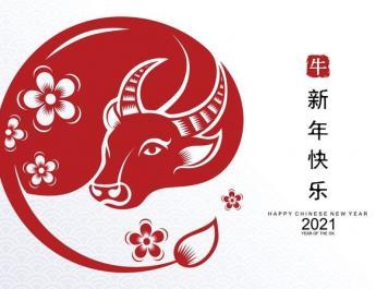 2021 - годината на бика
