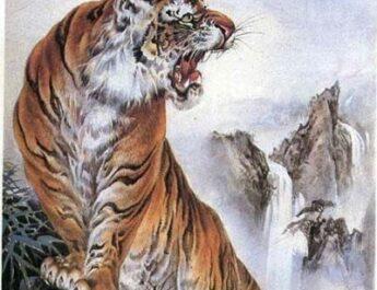 Годината на тигъра 2022